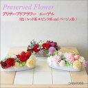 [email service correspondence impossibility] [belonging to clear case] is fs2gm [RCPnewlife] [RCPfashion] flower プリザーブドフラワーアレンジメントエーデル DAN-P063 [easy ギフ _ Messe input] which does not become refined