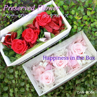 Karenai flower boxed preserved flower arrangement gift perfect! Box rose DAN-P064fs3gm