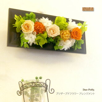 Karenai flower preserved flower arrangement wall hanging wood frame black 2 WAY DAN-P083fs3gm