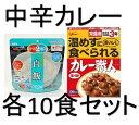 グリコ 常備用カレー職人【中辛】マジックライス白飯各10食セット