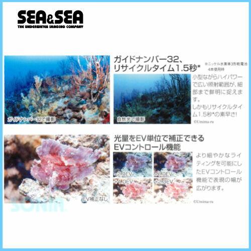 SEA&SEA(シーアンドシー)【03117】YS-D2U/WStrobe水中ストロボ02P03Sep16
