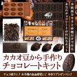 【手作りキット】カカオ豆から手作りチョコレートキット【ダリケー/Dari K/てづくりプレゼント/自由研究/お菓子作り/】