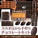 【手作りキット】カカオ豆から手作りチョコレートキット【ダリケー/Dari K/てづくりプレゼント/自由研究/お菓子作り】