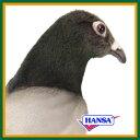 HANSA ハンサ ぬいぐるみ6299 鳩 ハト 29 PIGEON