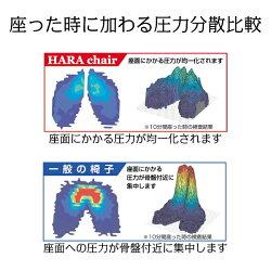 �ڥ�ӥ塼�ǥ��������ɡۡ�����̵���۳ڡ��������ϥ��Хå�ɪ��[HHC-19A]�ϥ�������ѥ�������������ե����������ⵡǽ�������ꥯ�饤�˥�������̳�ػҥ������ڹ����ͽ�ɹ���HARAHARACHAIR�ϥ��smtb-tk�ۡ�RCP��