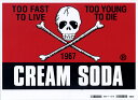 CREAMSODA cream soda CS corner skeleton sticker PD26GS-02