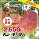 【送料無料】長野県産 サンふじりんご 訳あり 5kg 産地直送 おいしいリンゴ