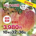 水果 - ポイント5倍!【送料無料】長野県産 サンふじりんご 訳あり 10kg 産地直送 おいしいリンゴ プレゼントにも