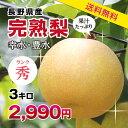 エントリーで更に3倍!【送料無料】梨 幸水・豊水 秀品 3kg 長野産こだわりの甘い梨 旬の果物 ギフト お取り寄せ なし