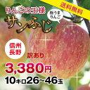 【送料無料】長野県産 りんご 訳あり 10kg | サンふじ...