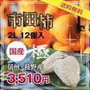 スーパーSALE 10%OFF!【送料無料】市田柿 極 2L/12個入 干柿・干し柿