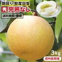 【送料無料】長野県産 梨 3kg 秀品 幸水 豊水 二十世紀...