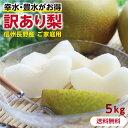 【送料無料】訳あり 梨 5kg 長野県産 幸水 or 豊水 ...