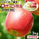 【送料無料】長野県産 りんご 3kg サンつがる 秀品 産地直送 | 葉とらず栽培 リンゴ 林檎 つがる ツガル 信州 お取り寄せ 旬の果物 フルーツ りんごの一番手 ギフト 贈り物