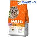 アイムス キャット 1-6歳用 うまみチキン味(1.8kg)【IAMS1120_chkn02】【アイムス】[アイムス 猫]