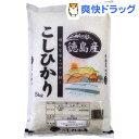 平成27年度 徳島県産こしひかり(新米)(5kg)[お米 白米]【送料無料】