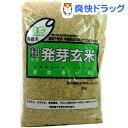 有機米 籾発芽玄米 芽吹き小町(あきたこまち)(2kg)