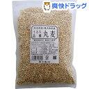 カホクの国産丸麦(500g)【カホク】