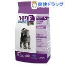 フォルツァ10 キャット ミスターフルーツ キトン(1.5kg)【フォルツァ10(FORZA10)】[子猫 仔猫]