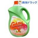 ゲイン アイランドフレッシュ(3.06L)【ゲイン(Gain)】[ゲイン 柔軟剤]