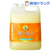 緑の魔女 バス用洗剤(5L)【緑の魔女】[緑の魔女 バス バス用 液体洗剤 風呂用]【送料無料】