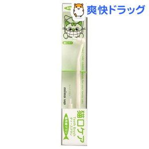 ティースブラシ 歯ブラシ