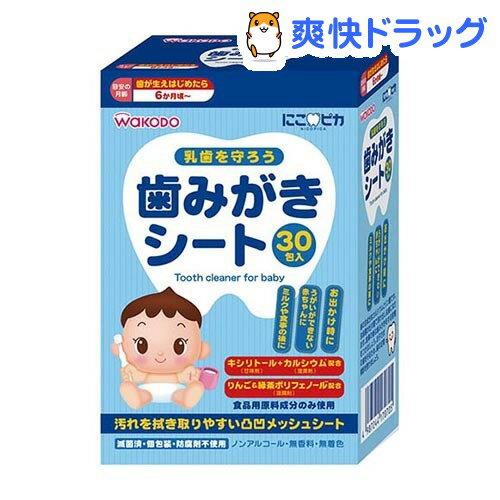 にこピカ歯みがきシートベビー(30包入)