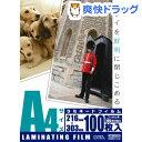 100ミクロン ラミフィルム A4 LAM-FA41003(100枚入)