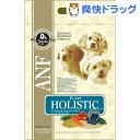 ANF ケイナインホリスティック パピー(3kg)【ANF】[ドッグフード ドライ 子犬 仔犬]【送料無料】