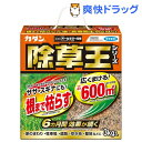 カダン 除草王 オールキラー 粒剤(3kg)【カダン】【送料無料】
