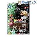 インセクトランド バイオ育成 幼虫マット(10L)【インセク...