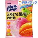 バヤリース とろける果実のど飴(120g)【バヤリース】