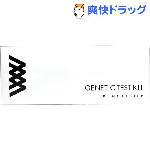 GIQ子どもの能力遺伝子検査キット(1セット)【送料無料】