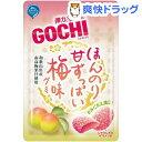 【訳あり】ゴチグミ ほんのり甘ずっぱい梅味(47g)