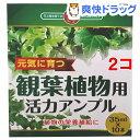 SUNBELLEX 観葉植物用 活力アンプル(35ml*10本入*2コセット)【SUNBELLEX】
