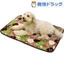 【訳あり】電気のいらない暖か ほこほこ保温マット ジューシーブラウン M(1枚入)【ドギーマン(Doggy Man)】