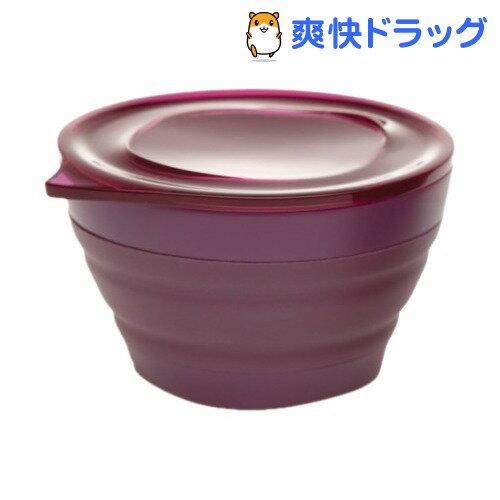 アラジン アコーディオンコンテナ S パープル(1コ入)【アラジン(Aladdin)】