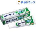 部分・総入れ歯安定剤 新ポリグリップ 極細ノズル 無添加(4...