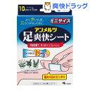 小林製薬 アンメルツ足爽快シート ミニ(8枚入)【アンメルツ】[フットケア]