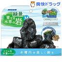 ニッソー 緑景・育てる水草の岩 M(1セット)【NISSO(ニッソー)】