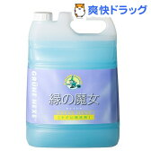 緑の魔女 トイレ用洗剤(5L)【緑の魔女】[液体洗剤 トイレ用]【送料無料】