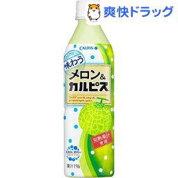 味わうメロン&カルピス(500mL*24本入)【カルピス】【送料無料】