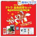 テトラ ミニアクアリウム 金魚飼育セット PL-17(1コ入)【Tetra(テトラ)】