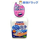 小林製薬 パーシャルデント 洗浄フォーム ミントの香り(250mL)【HLSDU】 /【パーシャルデント】[入れ歯洗浄剤]