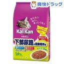 カルカン ドライ 下部尿路の健康維持用 まぐろと野菜味(1.6kg)【d_kal】【カルカン(kal kan)】
