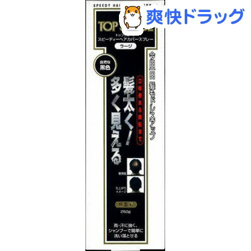 トップシェードスピーディーヘアカバースプレー 自然な黒色(250g)【トップシェード】[ス…...:soukai:10095172