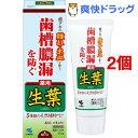 小林製薬 薬用歯みがき 生葉(100g*2コセット)【生葉】