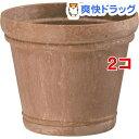 シャビーポット 5号 ブラウン(1.2L*2コセット)【大和プラスチック】