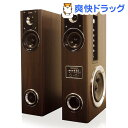 FUZE BLuetooth対応 アンプ内蔵デゥアルタワースピーカー TSX230BT2(1台)【送...
