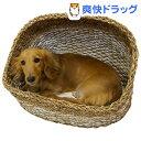 ドギーマン アジアンベッド ホワイトアイランド ハーフドーム 犬用(1コ入)【ドギーマン(Doggy Man)】